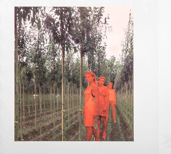 Picture from Saskia Van Drimmelen in September 2002.